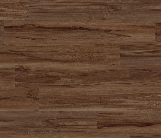 Light Collection Plank PW 3530 DP de Project Floors | Planchas