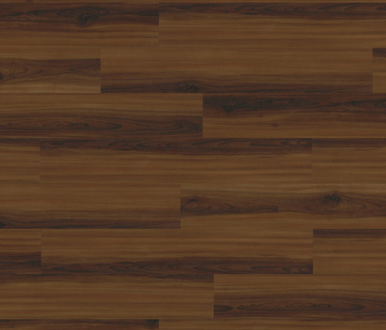 Medium Collection Plank PW 1148 CP di Project Floors | Pannelli/lastre
