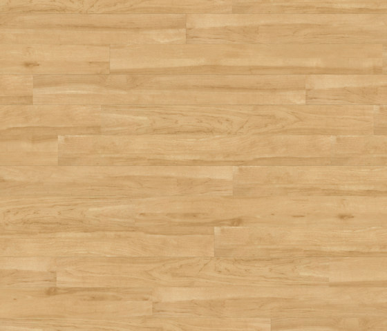 Floors@Work | 55 PW 1903 by Project Floors | Synthetic panels