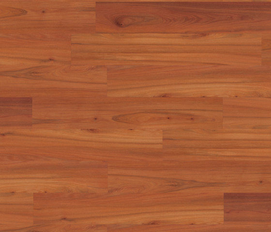 Medium Collection Plank PW 3009 CP by Project Floors | Synthetic panels