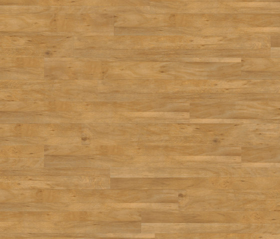 Premium Collection Plank PW 1115 AP by Project Floors | Synthetic panels