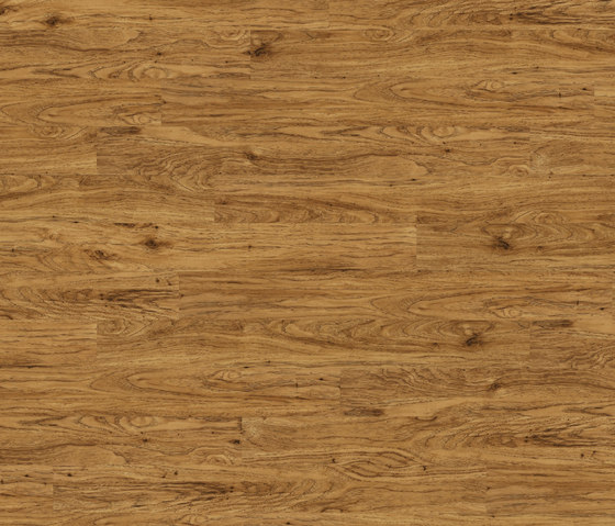 Premium Collection Plank PW 1307 AP by Project Floors | Synthetic slabs