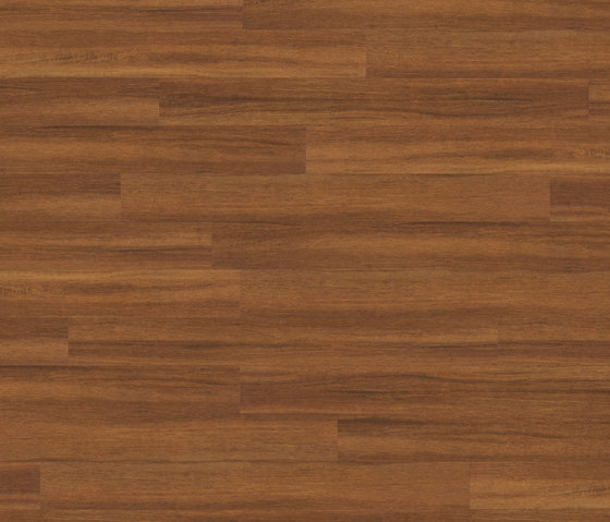 Premium Collection Plank PW 1505 AP de Project Floors | Planchas