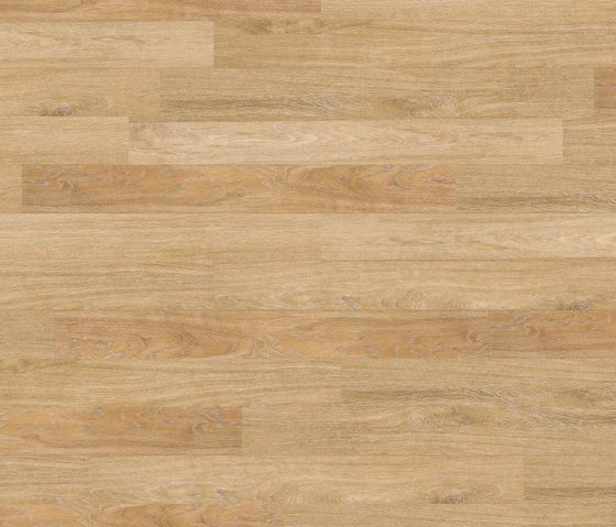 Floors@Home | 20 PW 1633 de Project Floors | Planchas