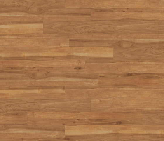 Premium Collection Plank PW 1907 AP by Project Floors | Synthetic panels