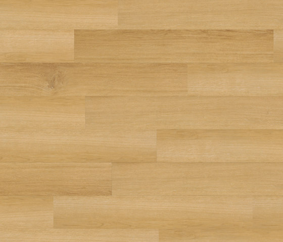 Premium Collection Plank PW 3013 AP by Project Floors | Synthetic panels