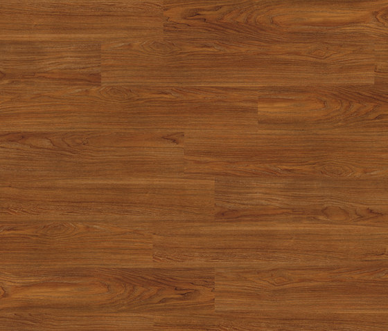 Premium Collection Plank PW 3042 AP by Project Floors | Synthetic panels