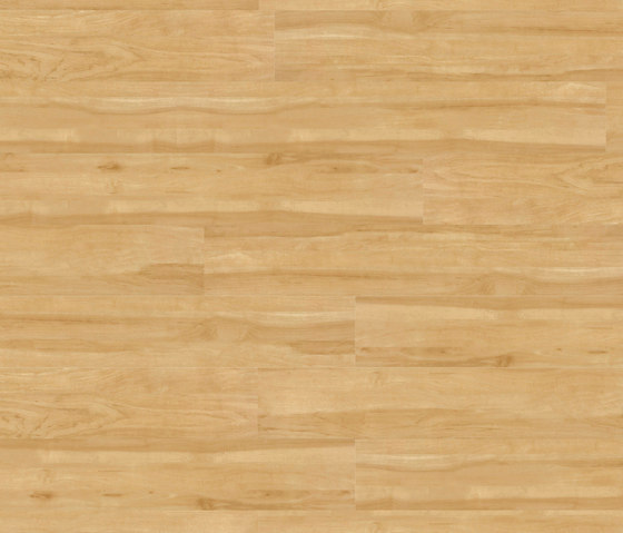 Woba Kollektion Plank WB 0015 by Project Floors | Plastic sheets/panels