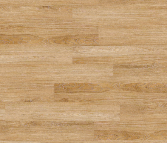 Woba Kollektion Plank WB 0020 by Project Floors | Synthetic panels