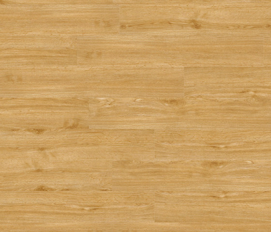 Woba Kollektion Plank WB 0030 by Project Floors | Synthetic panels