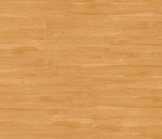 Woba Kollektion Plank WB 0035 by Project Floors | Synthetic panels