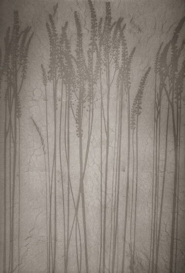 Leaf metal allocation | grasses by VEROB | Coating