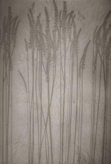 Leaf metal allocation | grasses di VEROB | Rivestimento / Copertura