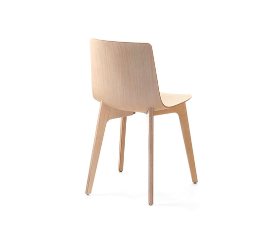 Lottus Chair by ENEA | Restaurant chairs
