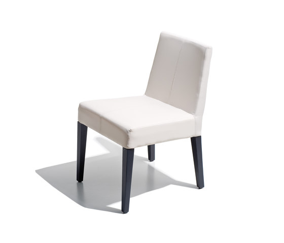 ribot collection chair by Schönhuber Franchi | Multipurpose chairs