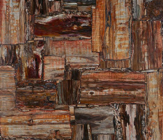 Prexury Retro Petrified Wood Mineral Composite Panels