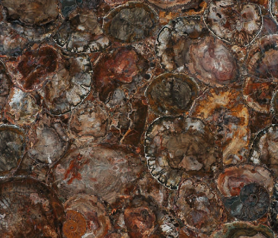 Prexury Petrified Wood by Cosentino | Mineral composite panels