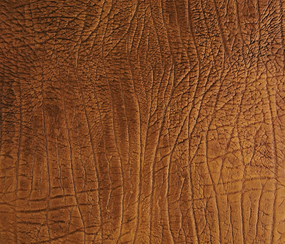 Tactile Amber elefant by Nextep Leathers | Leather tiles