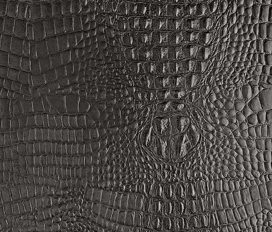 Tactile Slate cayman von Nextep Leathers | Leder-Wandfliesen