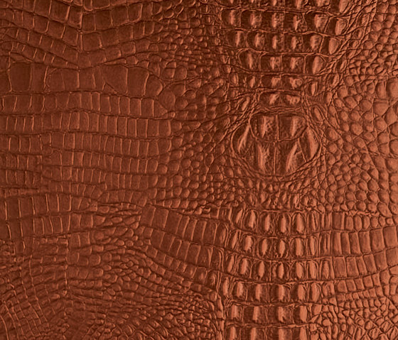 Tactile Mahogany cayman by Nextep Leathers | Natural leather wall tiles