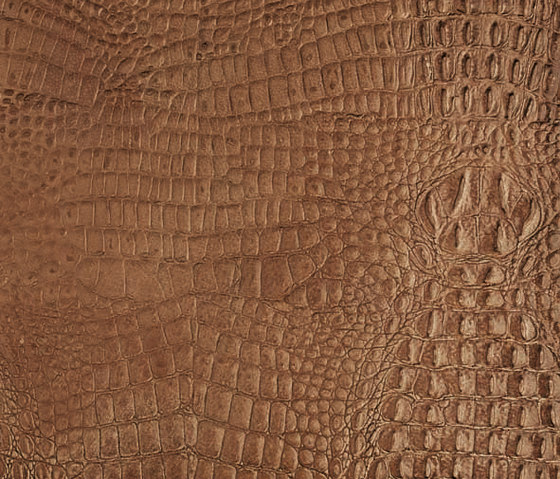 Tactile Ivory cayman de Nextep Leathers | Natural leather wall tiles