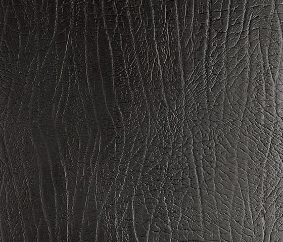Tactile Black elefant de Nextep Leathers | Carrelage