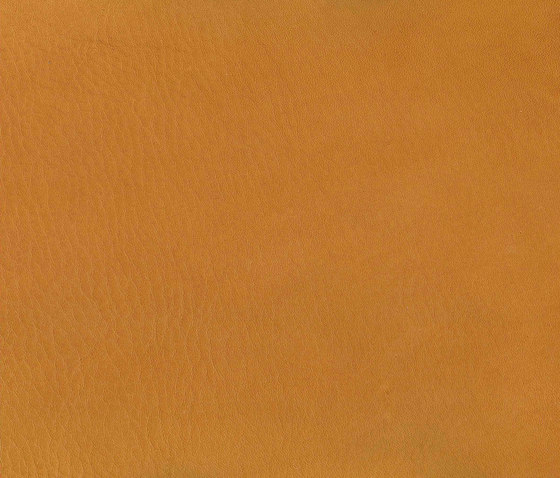 Natural Lorea Bravo 050 by Alonso Mercader | Fabrics