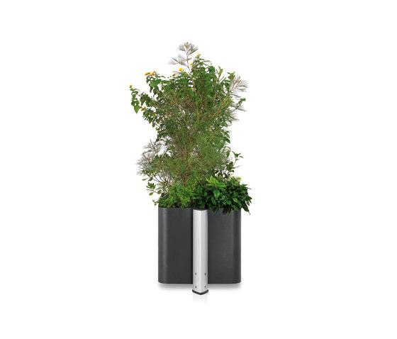 Loco Planter by ALL+ | Flowerpots / Planters