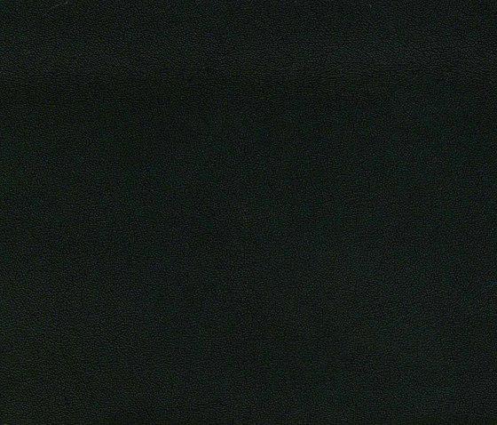 Evolve Flor 690 de Alonso Mercader | Similicuir