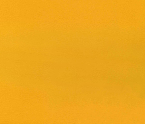 Evolve Grain 09 by Alonso Mercader | Colour solid/plain