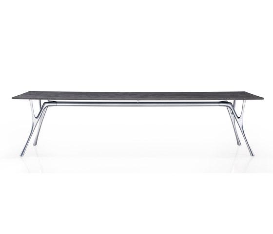 Pegaso Cemento by Caimi Brevetti | Conference tables