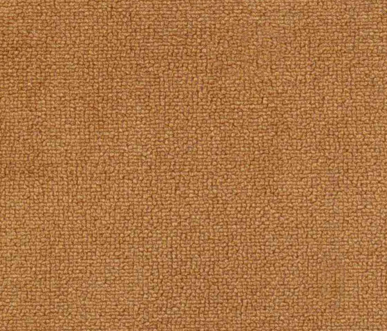 Buccara Velbo 1051 by Alonso Mercader | Fabrics