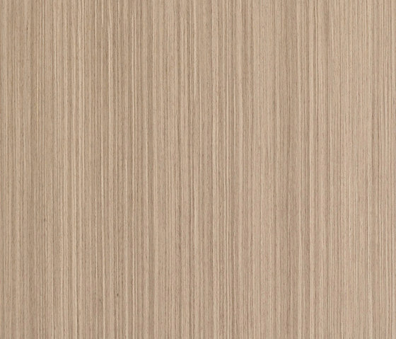 ALPIlignum Steady American Walnut 10.18 von Alpi | Wand Furniere