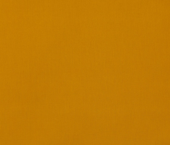Solids & Stripes Gold di Sunbrella   Tappezzeria per esterni