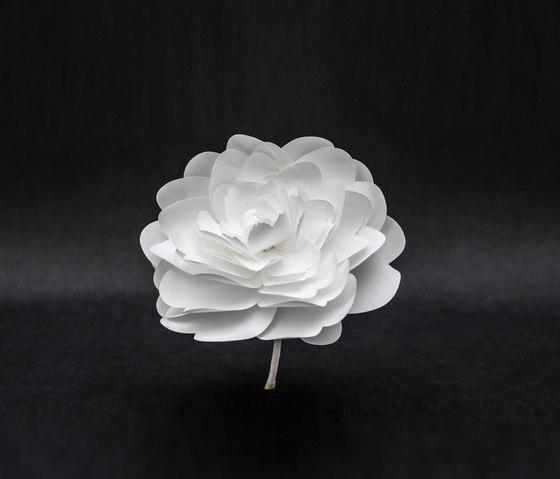 Fleurs by PROCÉDÉS CHÉNEL   Objects