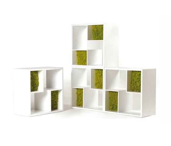 Modò Library by Verde Profilo | Shelves