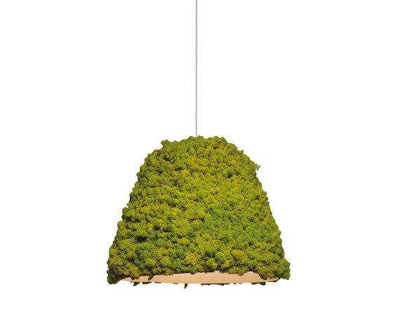 Moss Hanging lamp by Verde Profilo | General lighting
