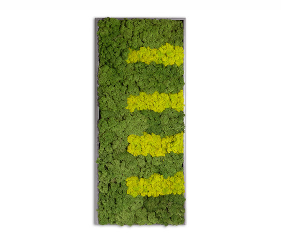 Moss painting R Picture by Verde Profilo | Wall decoration