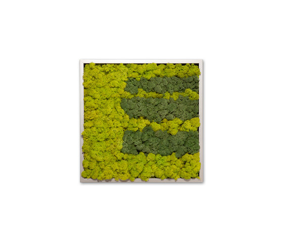 Moss painting S Picture by Verde Profilo | Wall decoration