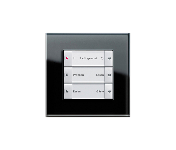 Esprit Glass | Radio wall transmitter by Gira | Lighting controls
