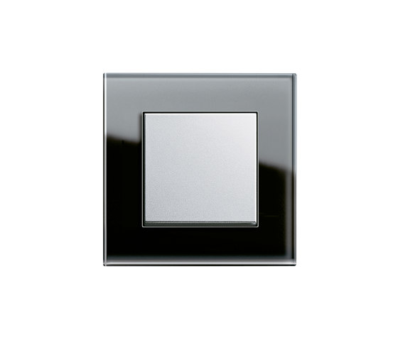 Esprit Glass | Switch range by Gira | Push-button switches
