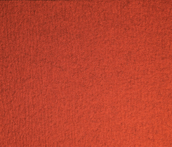 Feltro Color 10239 by Ruckstuhl | Rugs / Designer rugs
