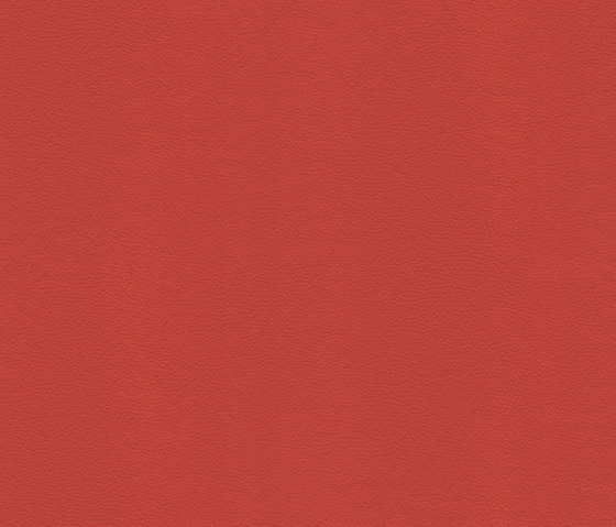 Domino 101 de Saum & Viebahn | Tejidos tapicerías