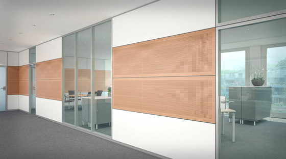 ModulASS Partition wall by Assmann Büromöbel | Partitions