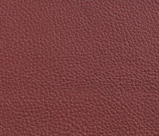 Elmorustical 53069 by Elmo | Natural leather