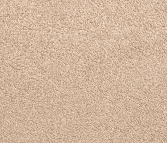 Elmosoft 02020 by Elmo | Natural leather
