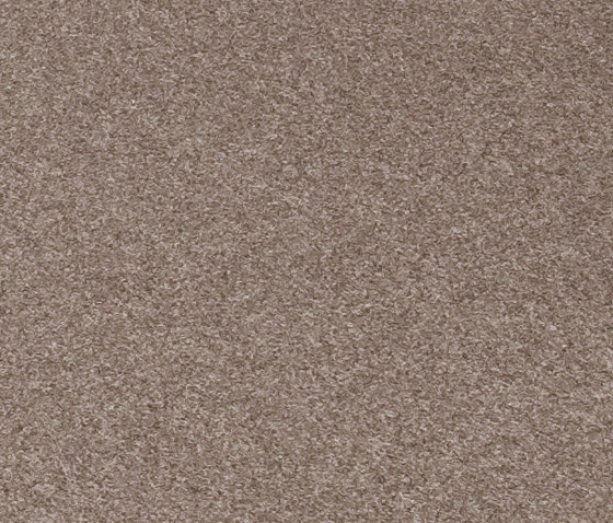 808 State dark taupe by kymo | Rugs / Designer rugs