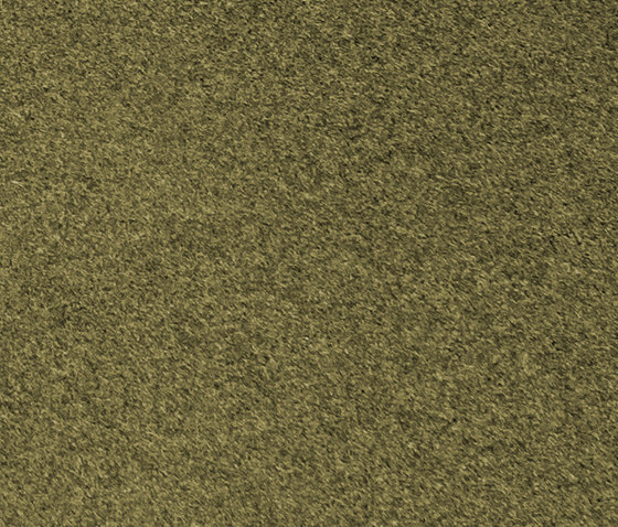 808 State olive grey di kymo | Tappeti / Tappeti d'autore