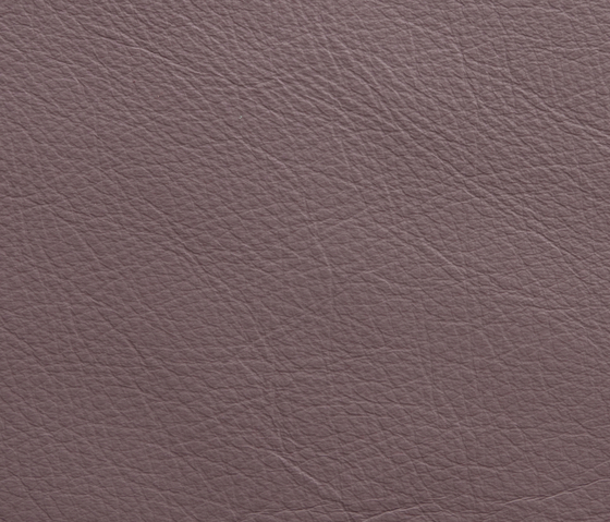 Elmosoft 13078 by Elmo | Natural leather