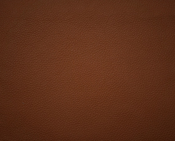 Elmosoft 33004 by Elmo | Natural leather